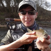 Ronsfishing Brown trout