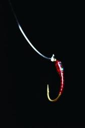 Bloodworm Buzzer