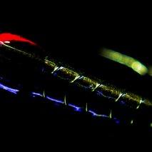 Olive UV Interceptor buzzer
