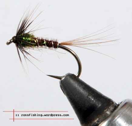 Cruncher ronsfishing