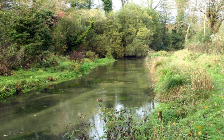 River Itchen Chalkstream Fishing