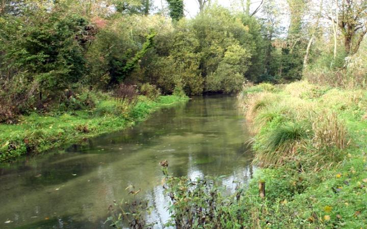 River Itchen Chalkstream Fishing