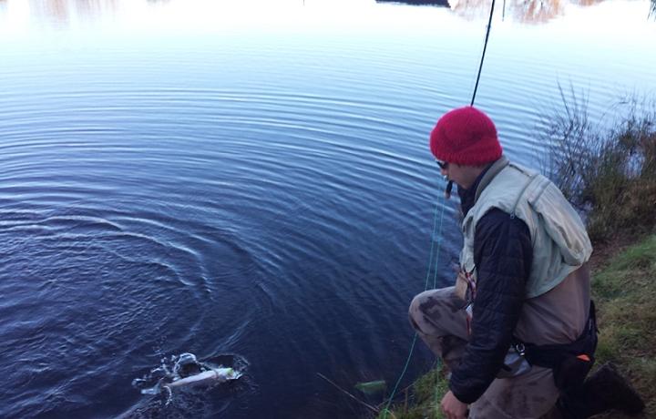 Kieron Jenkins Ronsfishing stocky