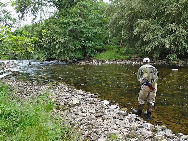 Kieron Jenkins River Fishing