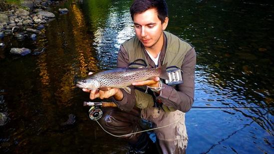 Ronsfishing Spinner Fall