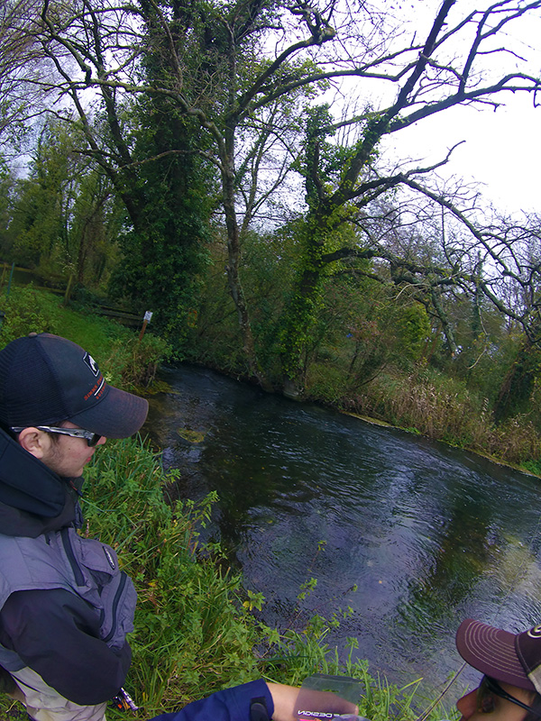 River Test Grayling Fishing