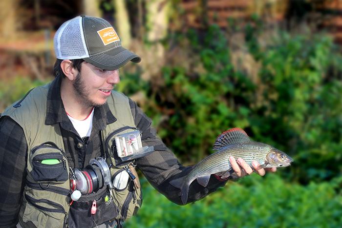 Chalkstream Grayling Fishing